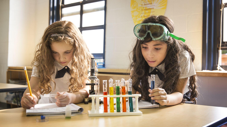 Hantering van begaafde leerders in die klaskamer – 'n blik in die praktyk